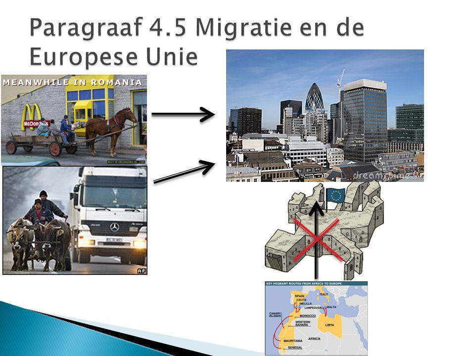 Paragraaf 4.5 Migratie en de Europese Unie