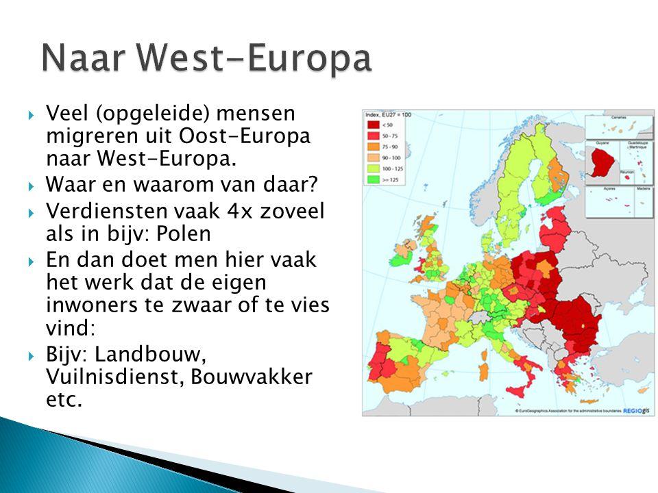 Naar West-Europa Veel (opgeleide) mensen migreren uit Oost-Europa naar West-Europa. Waar en waarom van daar