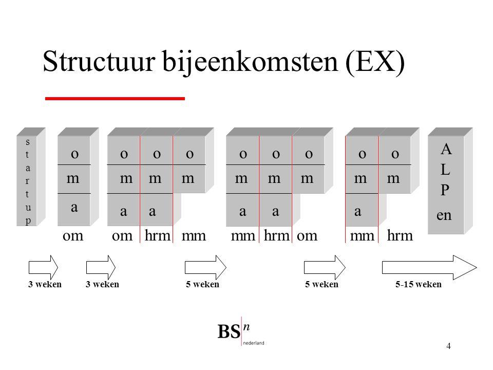 Structuur bijeenkomsten (EX)