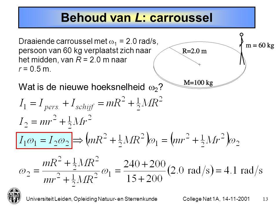 Behoud van L: carroussel