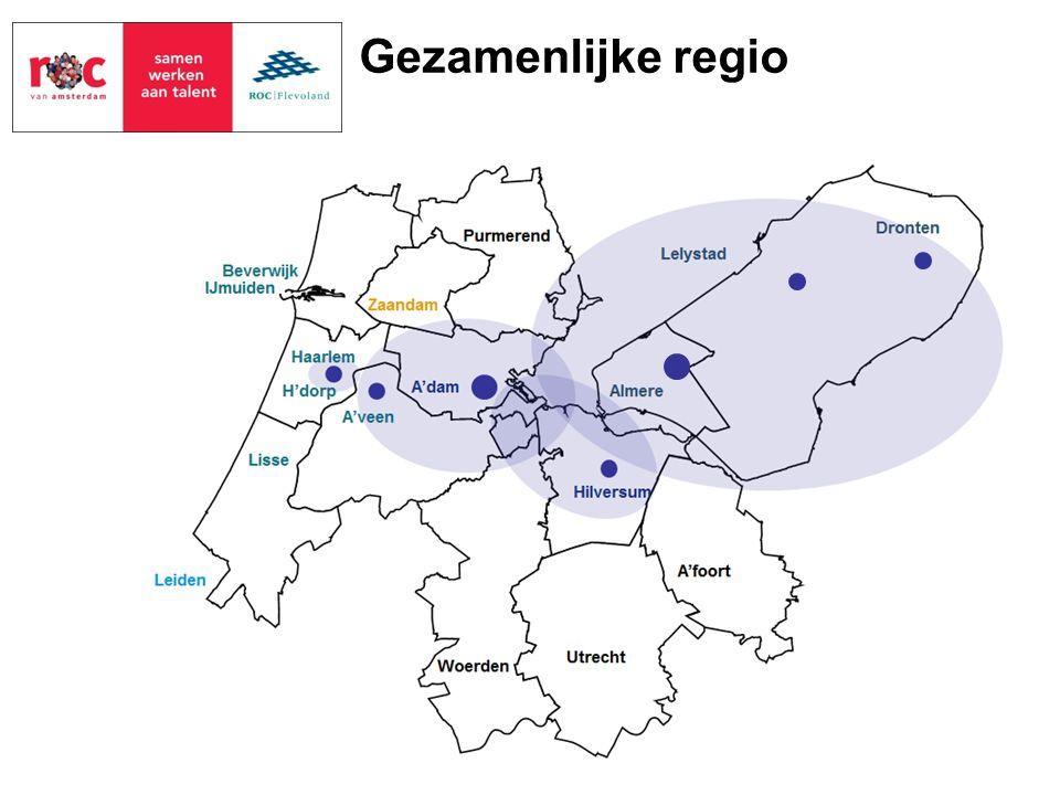 Gezamenlijke regio