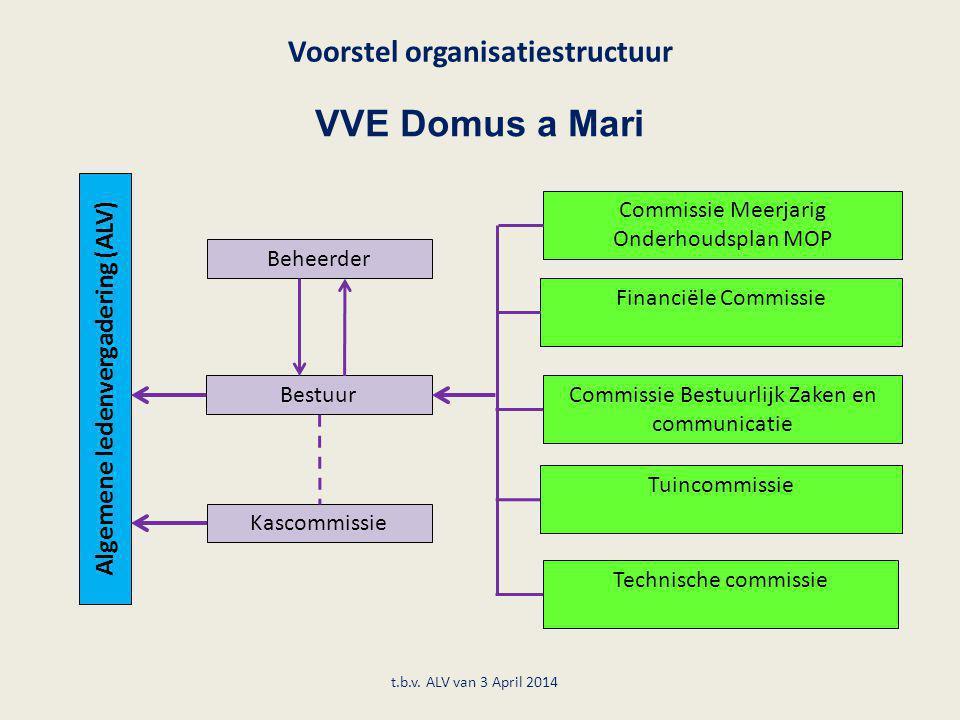 Voorstel organisatiestructuur