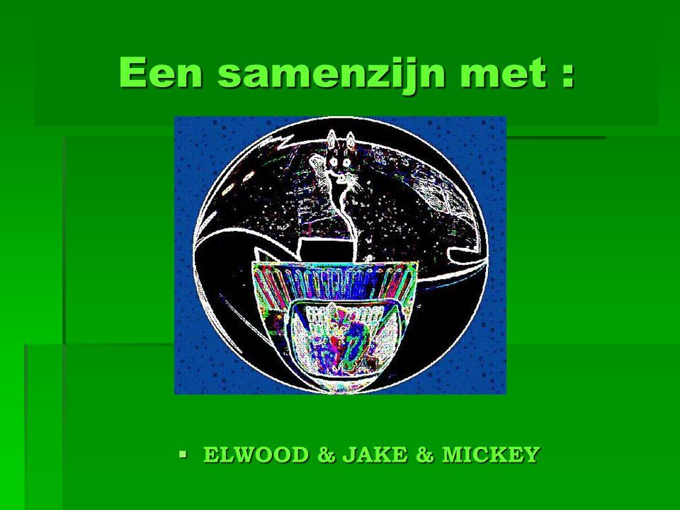 Een samenzijn met : ELWOOD & JAKE & MICKEY
