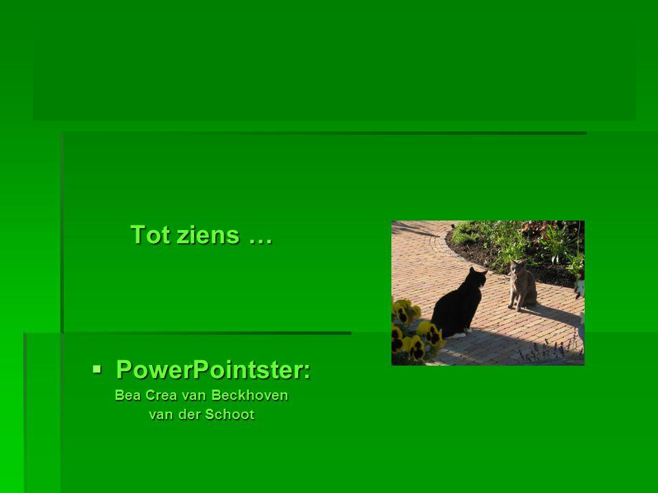 Tot ziens … PowerPointster: