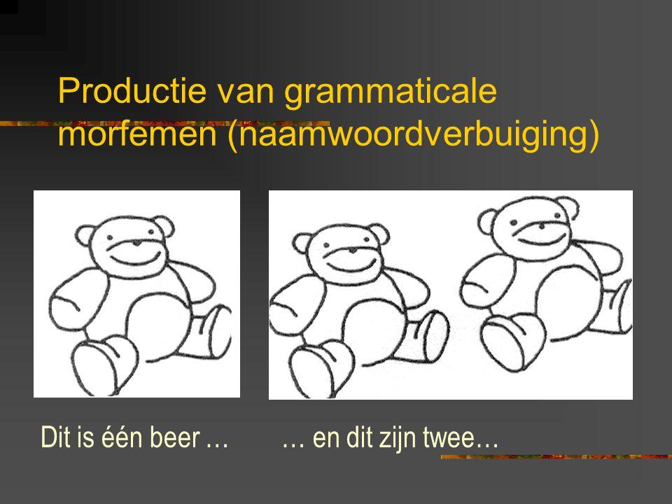 Productie van grammaticale morfemen (naamwoordverbuiging)