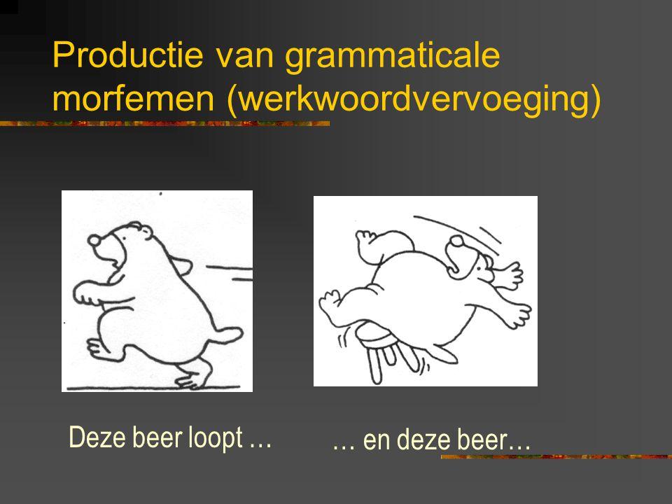 Productie van grammaticale morfemen (werkwoordvervoeging)