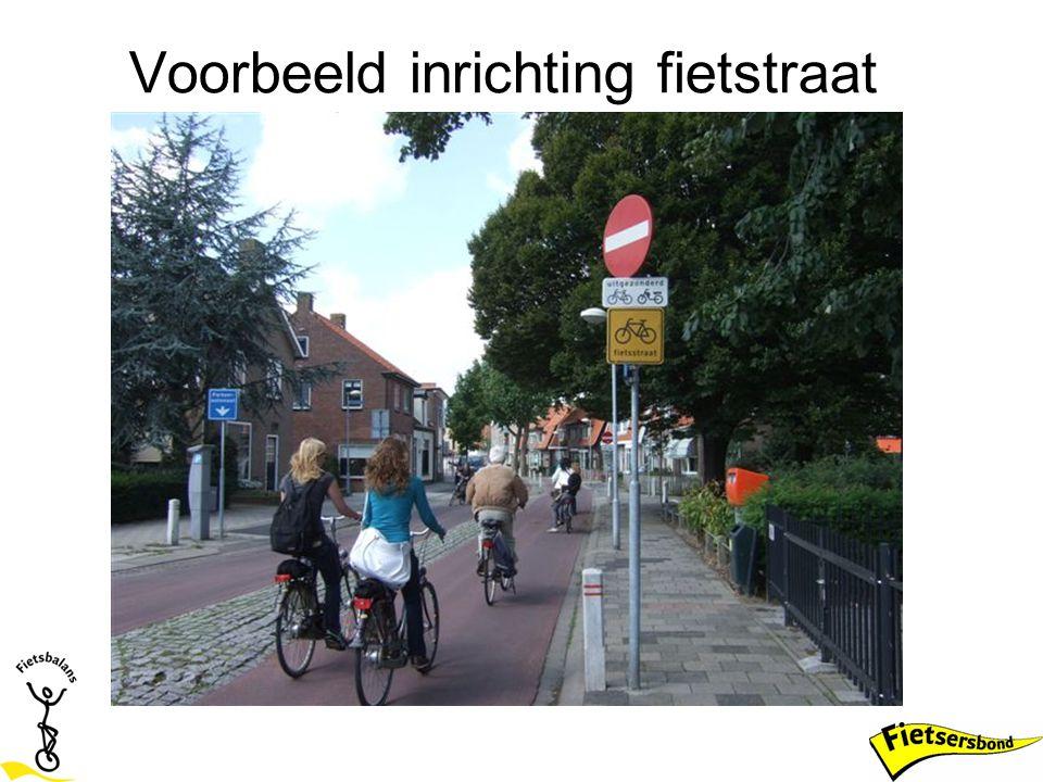 Voorbeeld inrichting fietstraat