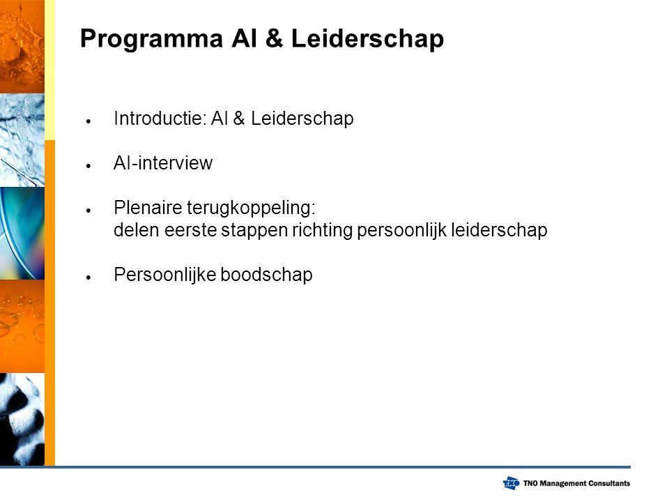 Programma AI & Leiderschap