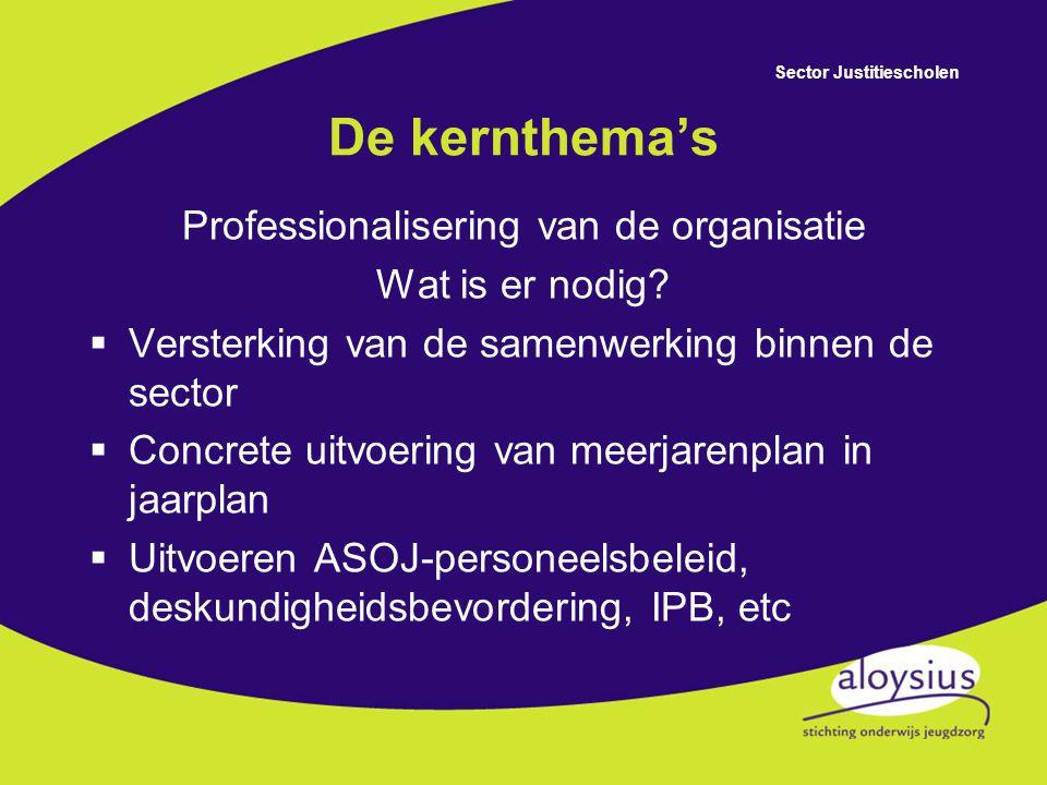 Professionalisering van de organisatie