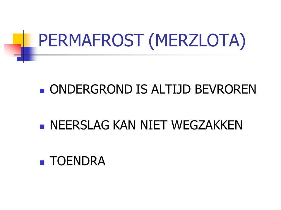 PERMAFROST (MERZLOTA)