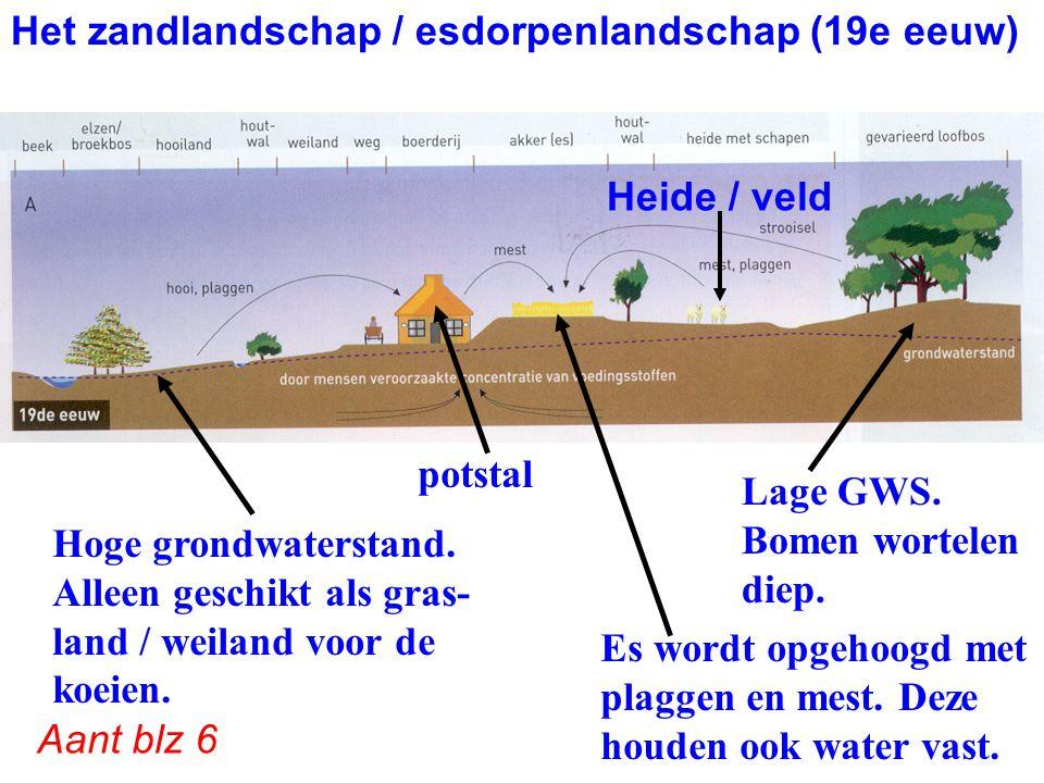 Het zandlandschap / esdorpenlandschap (19e eeuw)