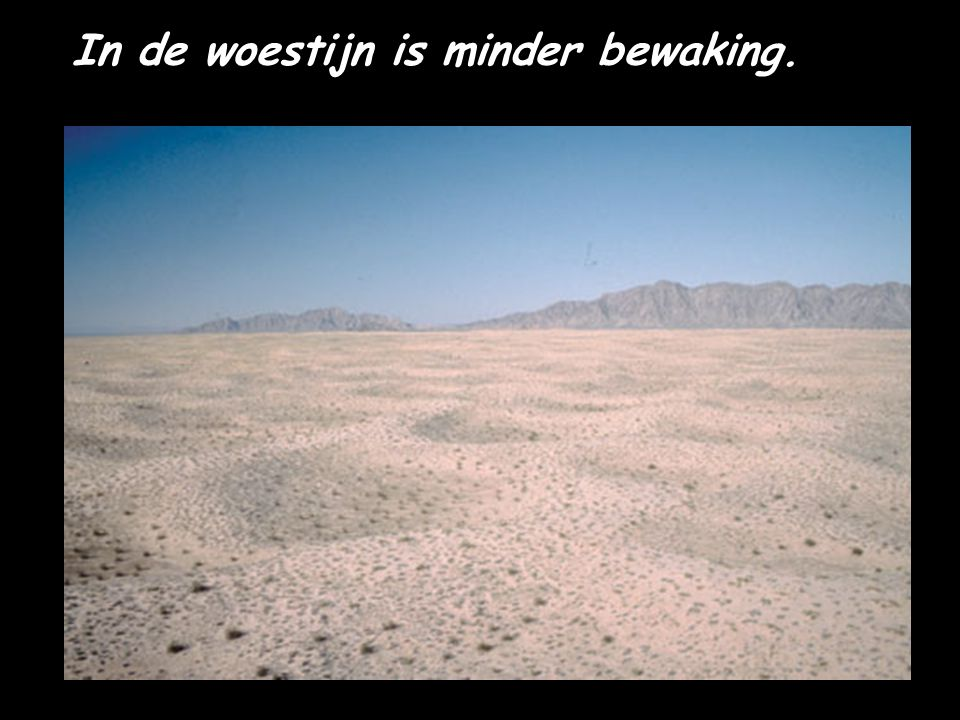 In de woestijn is minder bewaking.