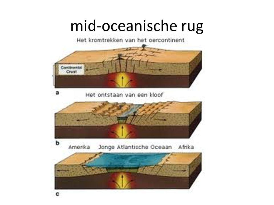 mid-oceanische rug