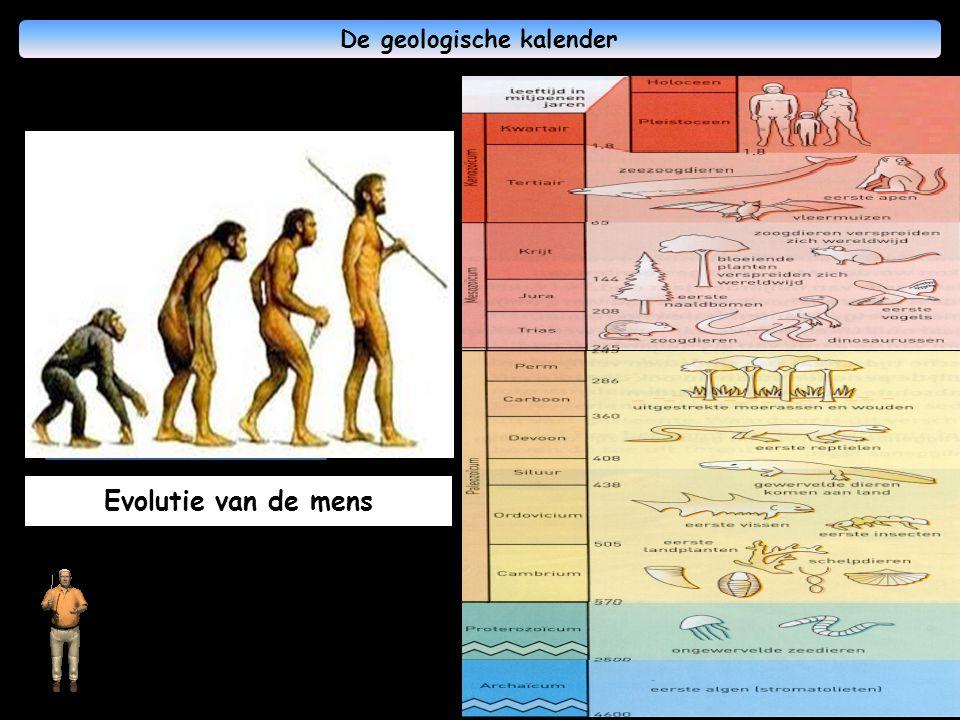 De geologische kalender