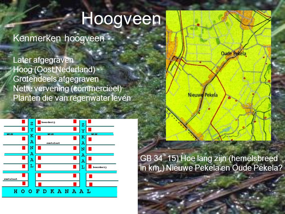 Hoogveen Kenmerken hoogveen Later afgegraven Hoog (Oost Nederland)
