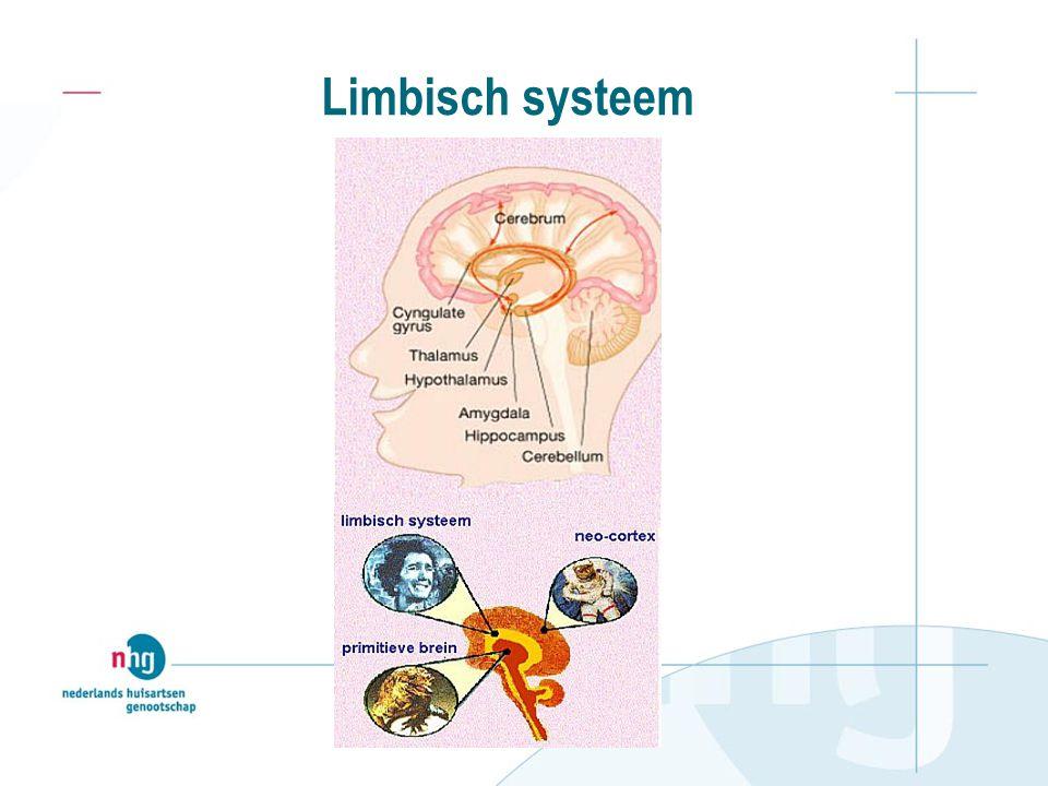 Limbisch systeem