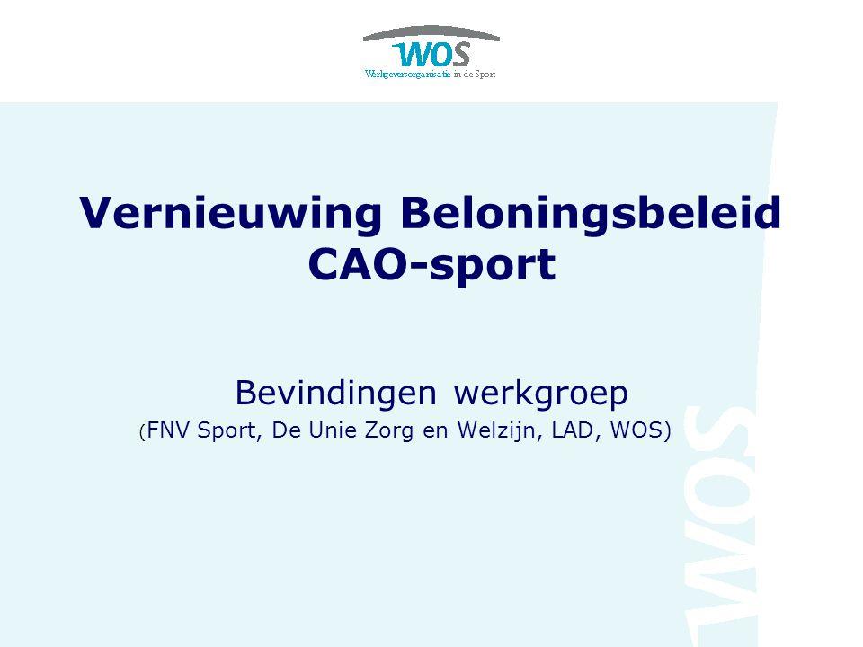 Vernieuwing Beloningsbeleid CAO-sport