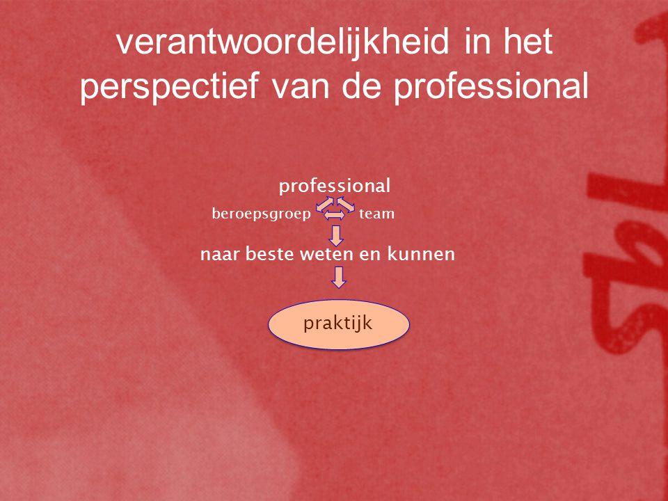 verantwoordelijkheid in het perspectief van de professional