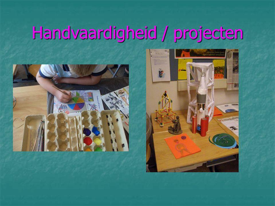 Handvaardigheid / projecten