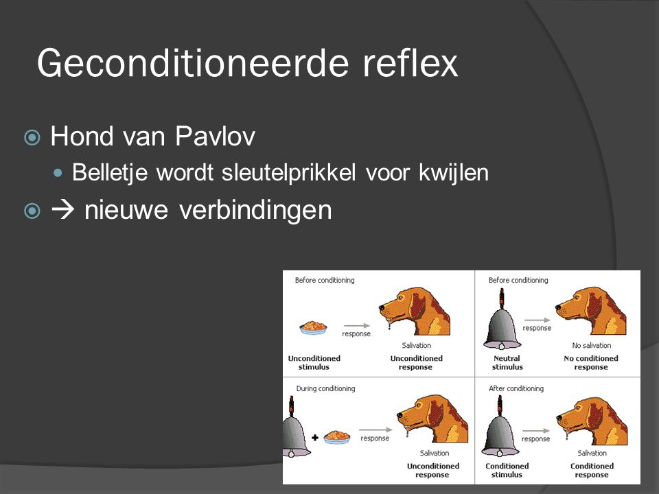 Geconditioneerde reflex