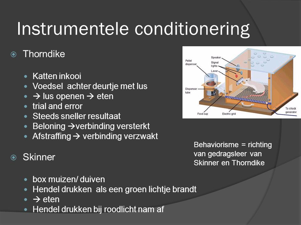 Instrumentele conditionering