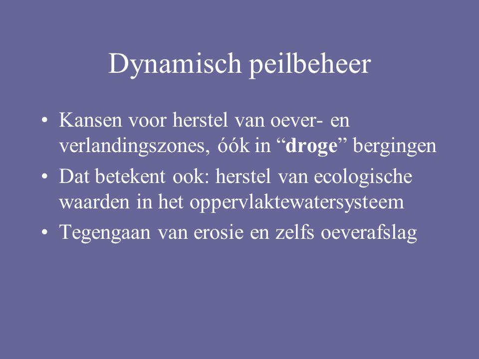 Dynamisch peilbeheer Kansen voor herstel van oever- en verlandingszones, óók in droge bergingen.