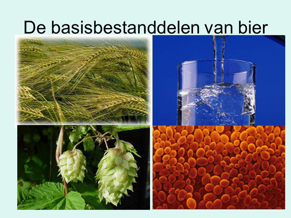 De basisbestanddelen van bier