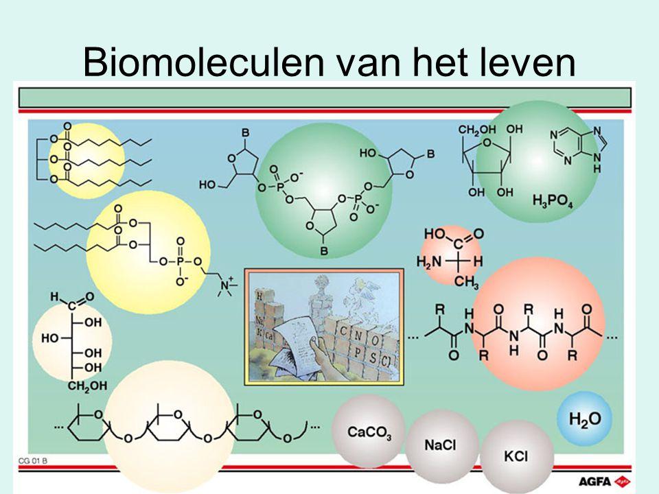 Biomoleculen van het leven