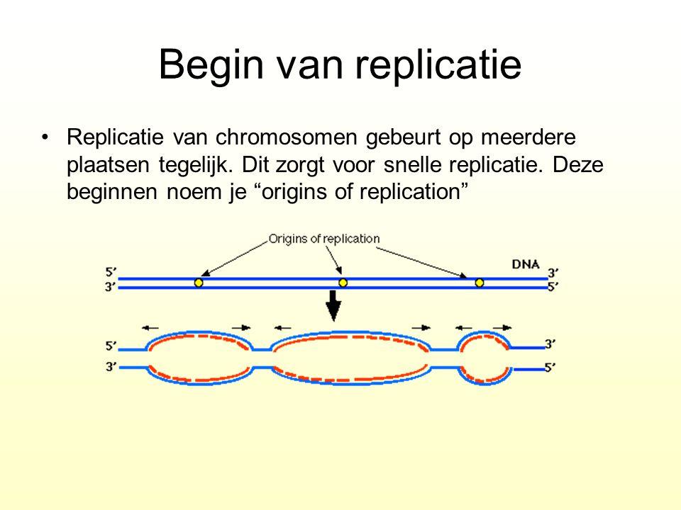 Begin van replicatie