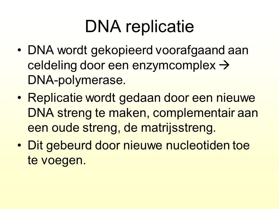 DNA replicatie DNA wordt gekopieerd voorafgaand aan celdeling door een enzymcomplex  DNA-polymerase.