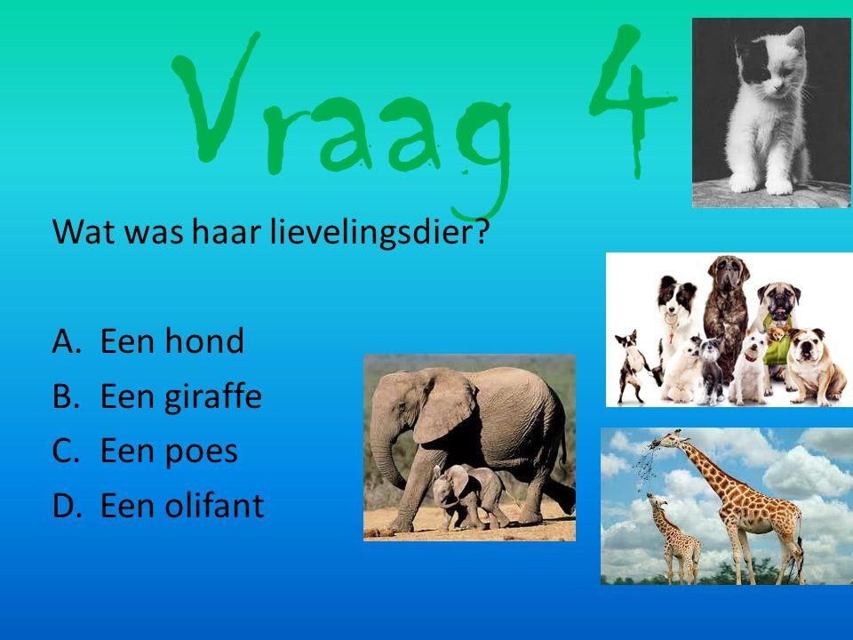 Vraag 4 Wat was haar lievelingsdier Een hond Een giraffe Een poes