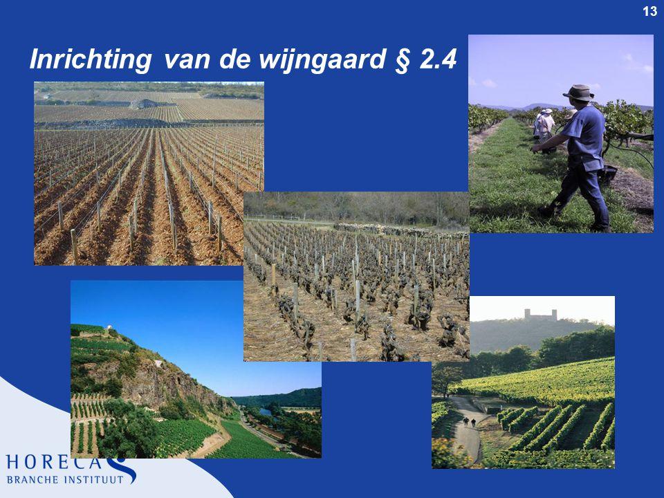 Inrichting van de wijngaard § 2.4