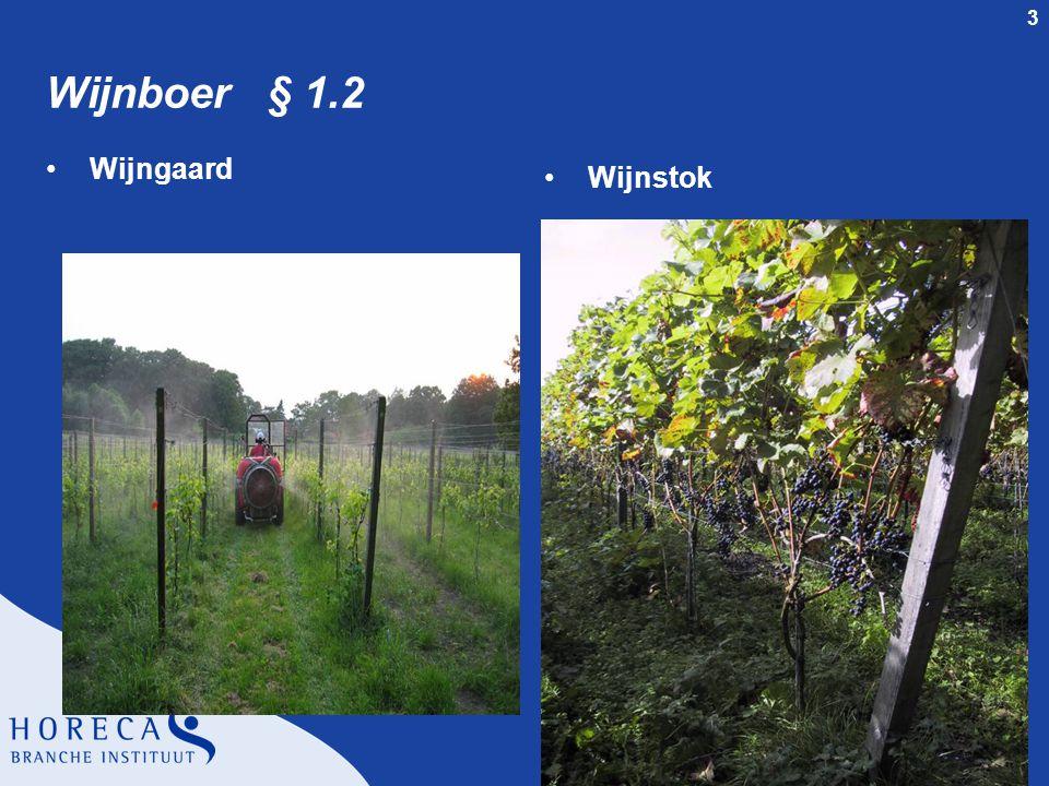 Wijnboer § 1.2 Wijngaard Wijnstok dia 3 § 1.2 Wijnboer Wijngaard