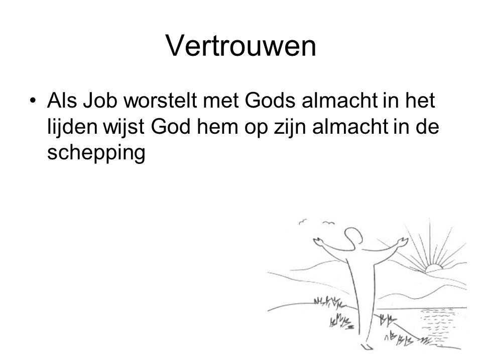 Vertrouwen Als Job worstelt met Gods almacht in het lijden wijst God hem op zijn almacht in de schepping.