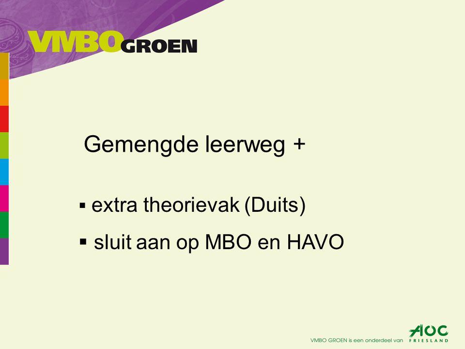 Gemengde leerweg + extra theorievak (Duits) sluit aan op MBO en HAVO