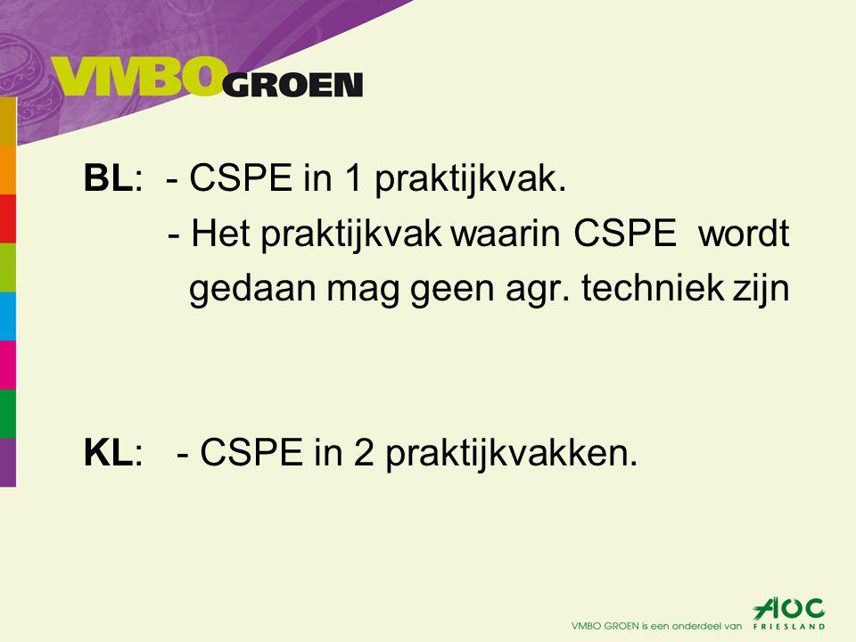 BL: - CSPE in 1 praktijkvak