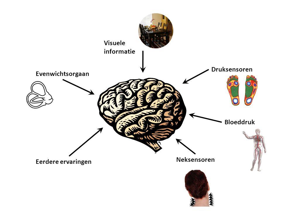 Visuele informatie Druksensoren Evenwichtsorgaan Bloeddruk Neksensoren Eerdere ervaringen