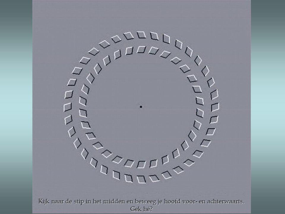 Kijk naar de stip in het midden en beweeg je hoofd voor- en achterwaarts. Gek hé