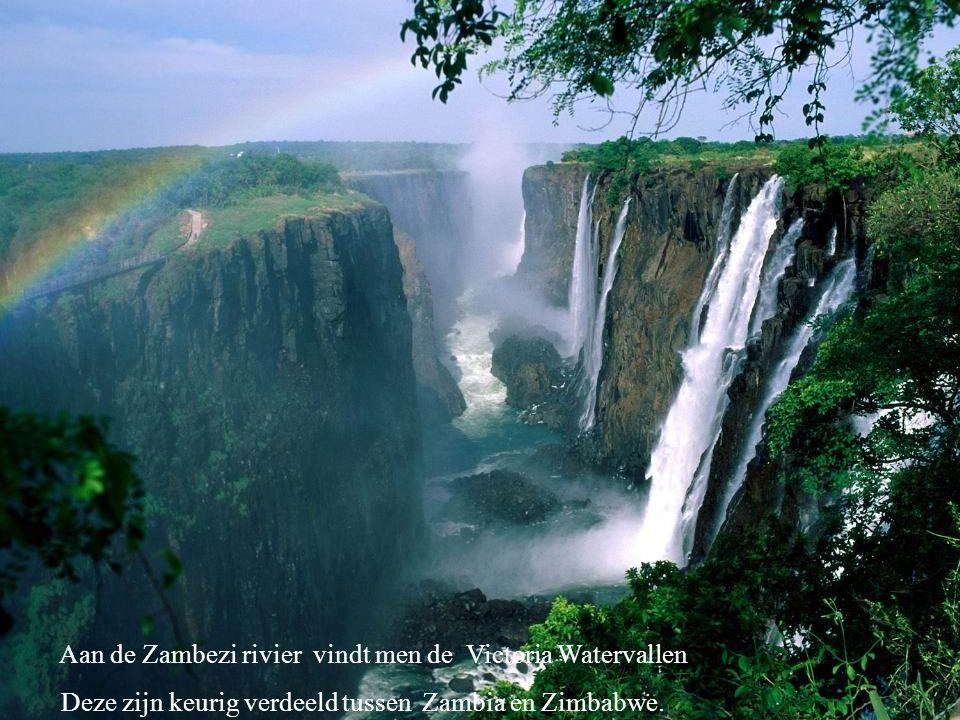 Aan de Zambezi rivier vindt men de Victoria Watervallen