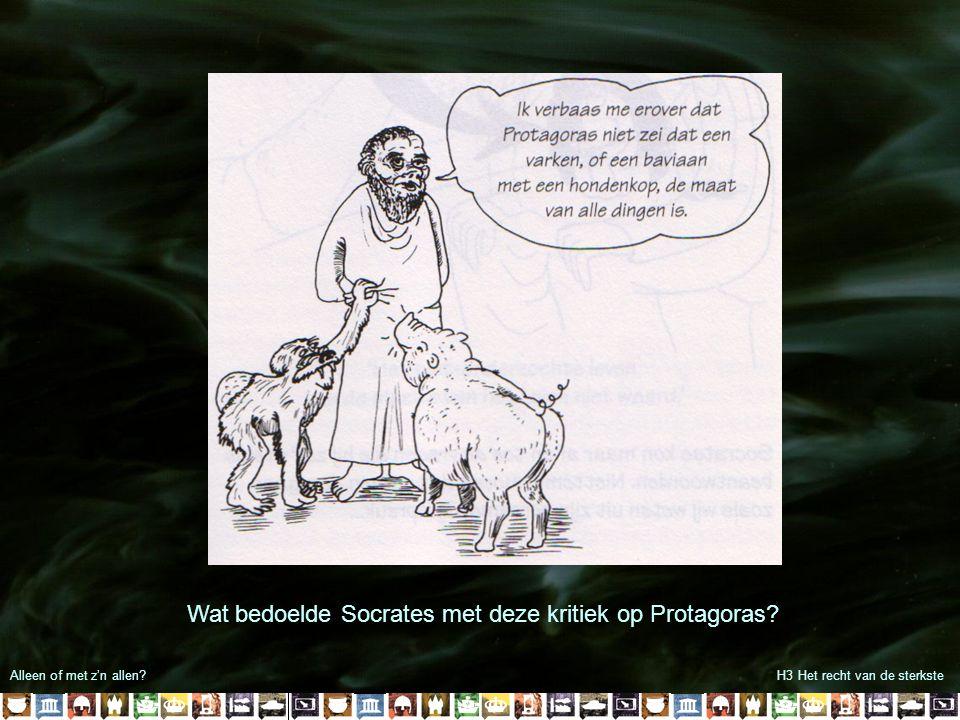 Wat bedoelde Socrates met deze kritiek op Protagoras
