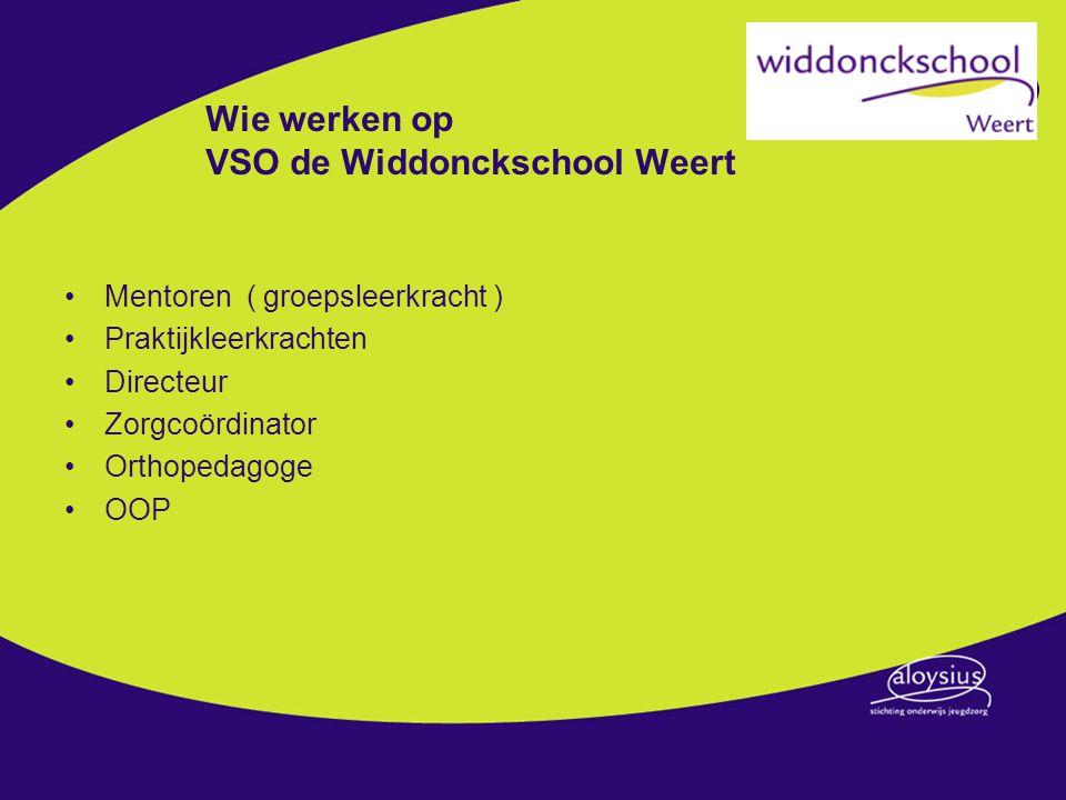 Wie werken op VSO de Widdonckschool Weert