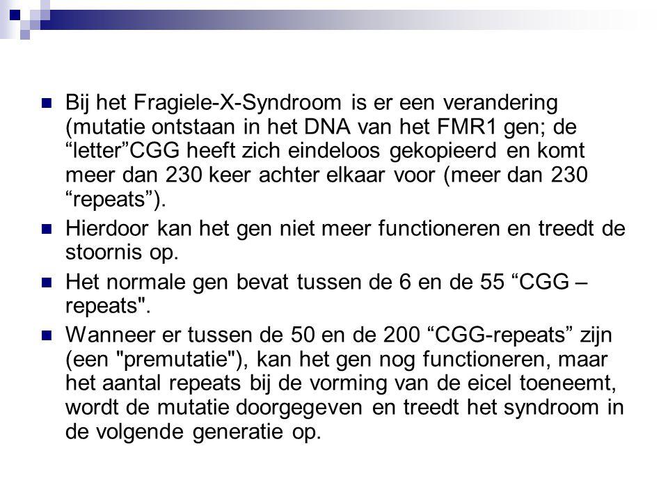 Bij het Fragiele-X-Syndroom is er een verandering (mutatie ontstaan in het DNA van het FMR1 gen; de letter CGG heeft zich eindeloos gekopieerd en komt meer dan 230 keer achter elkaar voor (meer dan 230 repeats ).