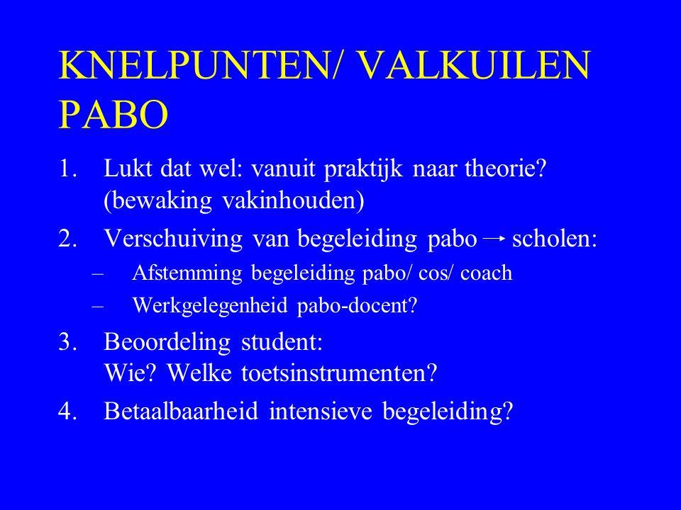 KNELPUNTEN/ VALKUILEN PABO