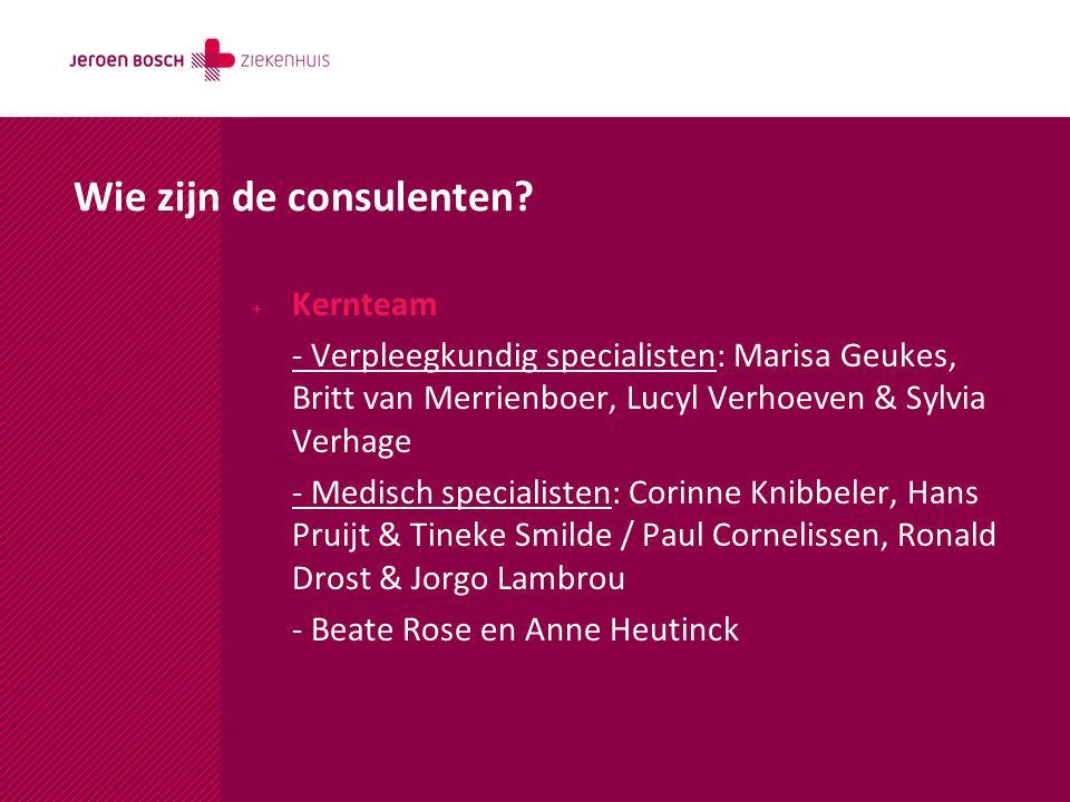 Wie zijn de consulenten