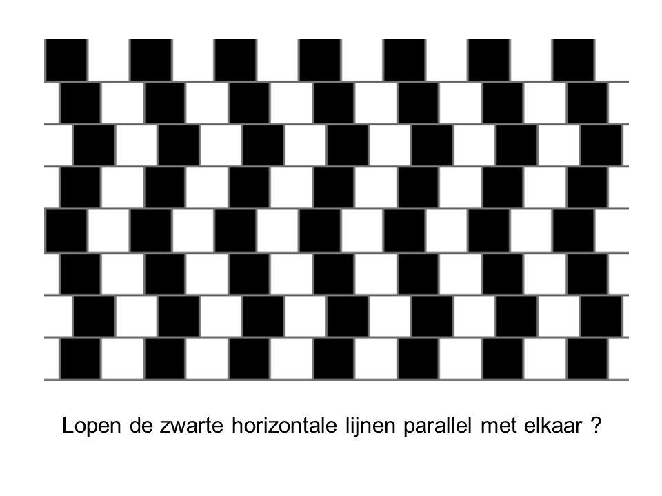 Lopen de zwarte horizontale lijnen parallel met elkaar