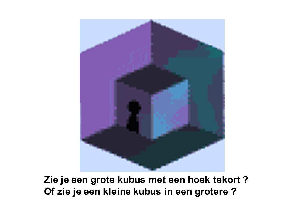 Zie je een grote kubus met een hoek tekort