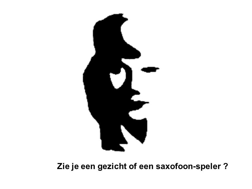 Zie je een gezicht of een saxofoon-speler