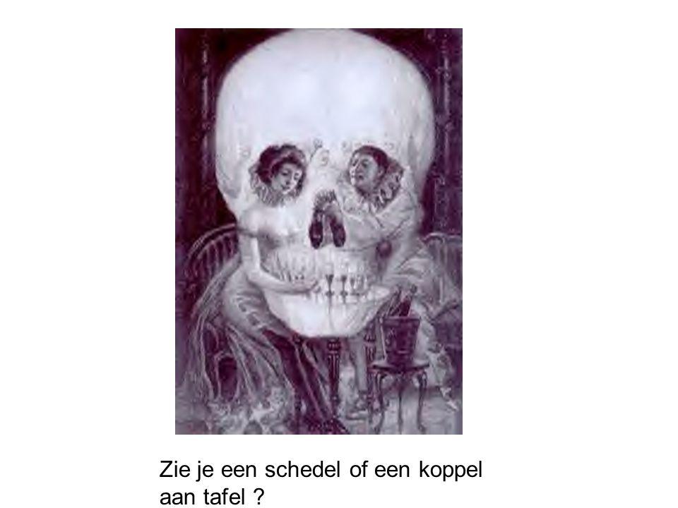 Zie je een schedel of een koppel aan tafel