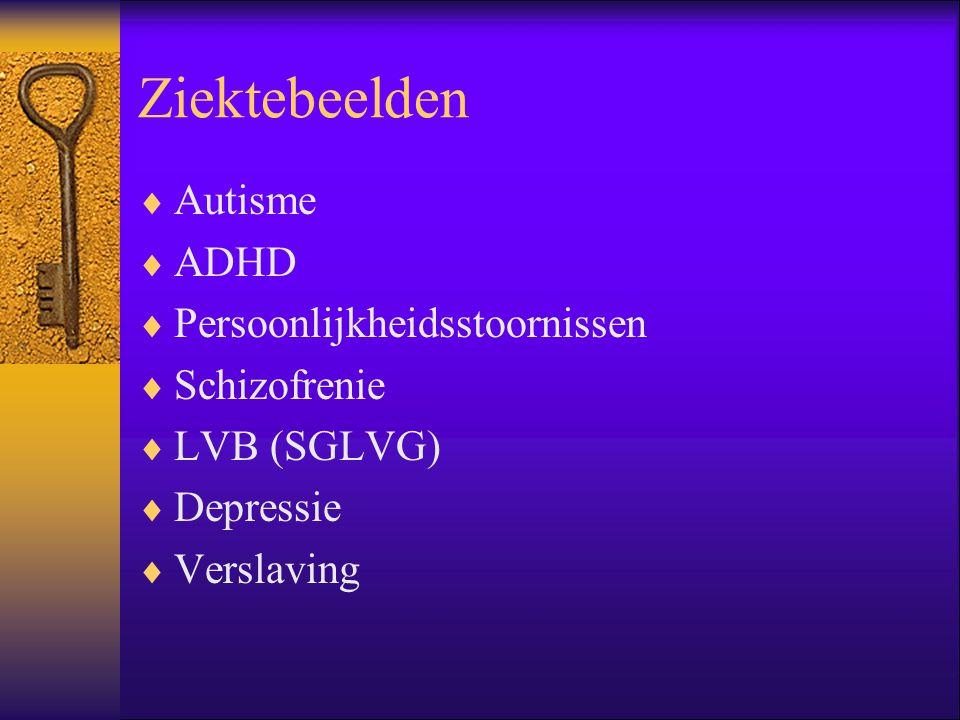 Ziektebeelden Autisme ADHD Persoonlijkheidsstoornissen Schizofrenie