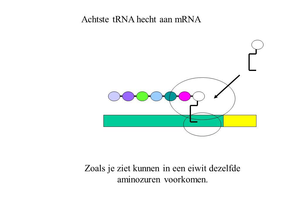 Zoals je ziet kunnen in een eiwit dezelfde